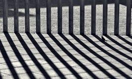 Dietro la riga Fotografie Stock Libere da Diritti