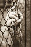 Dietro le barre Fotografia Stock Libera da Diritti