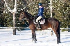 Diez años de muchacha que monta un caballo en invierno Fotografía de archivo libre de regalías