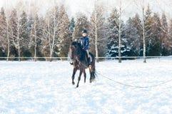 Diez años de muchacha que monta un caballo en invierno Imagenes de archivo