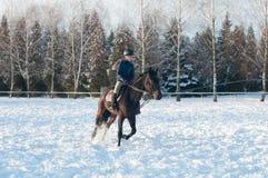 Diez años de muchacha que monta un caballo en invierno Imágenes de archivo libres de regalías