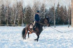 Diez años de muchacha que monta un caballo en invierno Fotografía de archivo