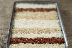 Diez diversas variedades de arroz en plato rectangular en el fondo del despido fotos de archivo libres de regalías