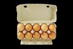 Diez huevos en el rectángulo gris. Imágenes de archivo libres de regalías