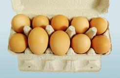 Diez huevos marrones. Fotos de archivo libres de regalías