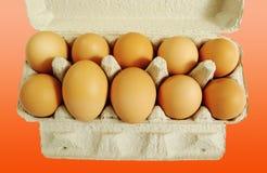 Diez huevos marrones. Imagen de archivo libre de regalías