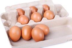 Diez huevos marrones en un conjunto del cartón Fotos de archivo libres de regalías