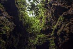 A diferença entre as paredes de pedra naturais vistas da boca da caverna seplawan em Purworejo, Indonésia imagens de stock