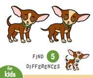 Diferenças do achado, jogo da educação, chihuahua ilustração royalty free