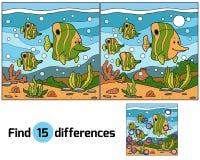 Diferenças do achado (peixes) Foto de Stock