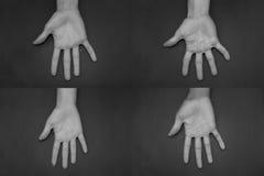 Diferencia en manos Imagenes de archivo