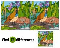 diferencias del hallazgo Foto de archivo libre de regalías