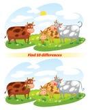 Diferencias del hallazgo 10 Imagen de archivo libre de regalías