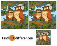 Diferencias del hallazgo (búho) Imágenes de archivo libres de regalías