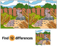 Diferencias del hallazgo (ratones) Foto de archivo