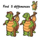 Diferencias del hallazgo (tortuga) Fotos de archivo