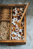 Diferent beans and grains in wooden box Stock Image