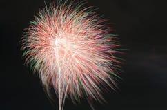 Diferente colorido de los fuegos artificiales Fotos de archivo