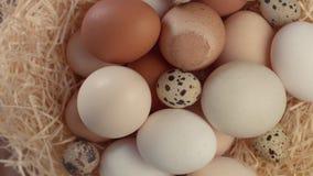 Diferente tipo de huevos en el balanceo de la jerarquía Visión superior metrajes