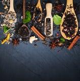 Diferente tipo de té en cucharas de madera Imágenes de archivo libres de regalías