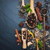 Diferente tipo de té en cucharas de madera Fotografía de archivo