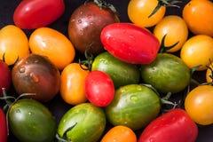 Diferente tipo de tomates Fotografía de archivo libre de regalías