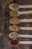 Diferentes tipos de ingredientes Imágenes de archivo libres de regalías