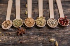 Diferentes tipos de ingredientes Fotos de archivo libres de regalías