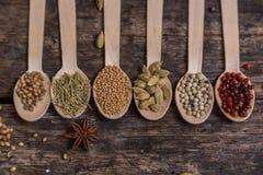 Diferentes tipos de ingredientes Fotografía de archivo