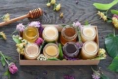 Diferentes tipos de miel en una caja Fotografía de archivo libre de regalías