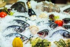 Diferentes tipos de pescados en el hielo con las verduras frescas Imagenes de archivo