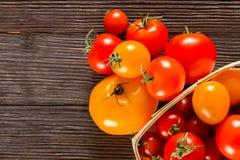 Diferentes tipos de tomates frescos Imagen de archivo