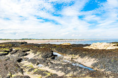 Diferents views of the St. Andrews beach in his bay, next the fa Royalty Free Stock Image