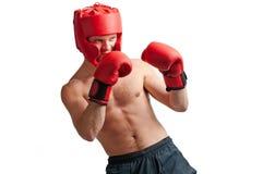 Difesa del pugile professionista su bianco Immagini Stock