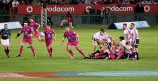Difesa Sudafrica 2012 dei tori di rugby Immagine Stock Libera da Diritti