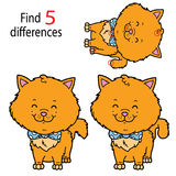 Différences de chatons Photo libre de droits