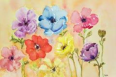 Différentes anémones colorées Images stock