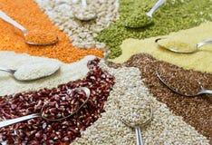 Différentes céréales colorées Images stock