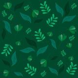 Différentes feuilles sur un vert-foncé Images libres de droits