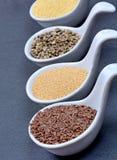 Différentes graines dans cuillères en céramique Photo stock