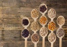 Différentes graines sur les cuillères en bois Photos stock