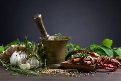 Différentes herbes et épices Photos stock