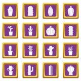 Différentes icônes de cactus réglées pourpres Photos stock