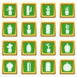 Différentes icônes de cactus réglées vertes Images libres de droits