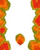 Différentes lames colorées Image libre de droits