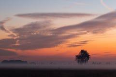Différentes lumières pendant le coucher du soleil photographie stock