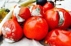 Différentes sortes de fruits et légumes putréfiés Photo libre de droits