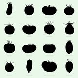 Différentes sortes de tomates illustration stock