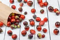 Différentes tomates dans le sac de papier sur le fond en bois blanc Photographie stock libre de droits