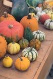 Différentes variétés de sirops et de potirons sur le fond en bois, concept de carte postale de thanksgiving images stock
